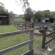 Stockyards Banyule Flats © D Hards